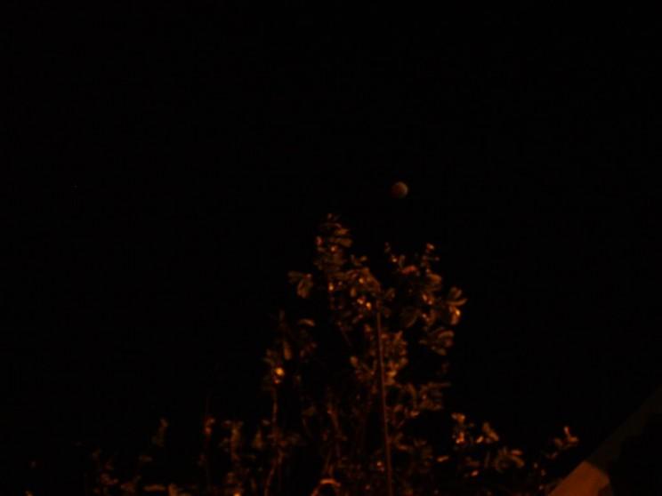 éclipse à Saint Pierre