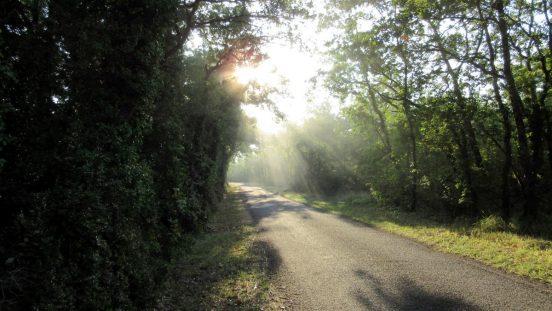 Joli chemin